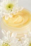 Visage ou crème corporelle Image libre de droits