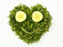 Visage souriant végétal Photographie stock libre de droits