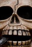 Visage squelettique Photographie stock libre de droits