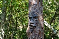 Visage sur l'arbre Image libre de droits