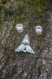 Visage sur l'arbre en LA Etats-Unis de la Nouvelle-Orléans Photo libre de droits