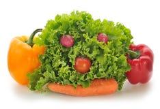 Visage végétal photo libre de droits