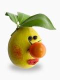 Visage végétal photos stock