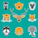 visages animaux réglés Photo stock