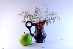 Visages d'automne Photographie stock