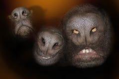 Visages de nez Photos libres de droits