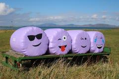 Visages de sourire heureux Image libre de droits