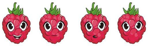 Visages des raspberrys Image stock