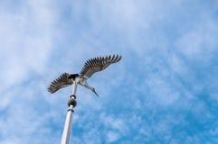 VISAGINAS, LITAUEN - 23. SEPTEMBER 2017: Storch-Statue in Visaginas-Stadt, Litauen Lizenzfreies Stockbild