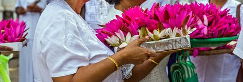 Visakha Bucha Day. Buddha's birthday lotus flower meditation relax concept Vesak day. Visakha Bucha Day with woman's hands holding water lilly lotus flower stock photo