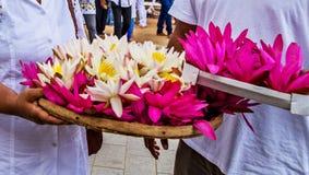 Visakha Bucha Day. Buddha's birthday lotus flower meditation relax concept Vesak day. Visakha Bucha Day with woman's hands holding water lilly lotus flower royalty free stock photos