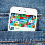 Visande Tumblr för silverApple iphone 6 applikation Royaltyfria Foton