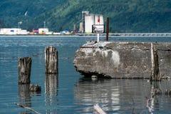 Visar att fördärvar av bybårhuset i den gamla staden Valdez royaltyfri fotografi