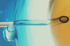 Visare för illustration för närbildsikt som 3D Glass gödslar spermainjektionen i kvinnligt ägg, begrepp, vetenskapligt experiment stock illustrationer