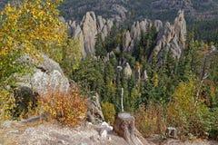 Visarlandskap, i Custer State Park royaltyfri foto
