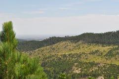 Visarna i Black Hills South Dakota och bergsikter royaltyfria bilder