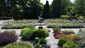 Visby botanisk trädgård arkivbilder