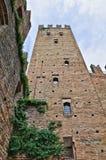 Visconti kasztel. castell'Arquato. emilia. Włochy. Zdjęcie Royalty Free