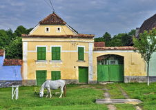 Viscri village Stock Photo