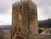 Viseu, Portogallo Fotografie Stock Libere da Diritti