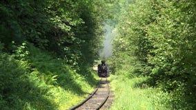 VISEUL DE SUS, RUMÄNIEN - 5. JUNI 2017: Alter Dampflokomotivzug Mocanita auf schmaler Eisenbahn kreuzt das Holz in Maramures stock video footage