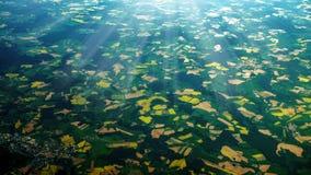 Visión aérea asombrosa Imagen de archivo libre de regalías