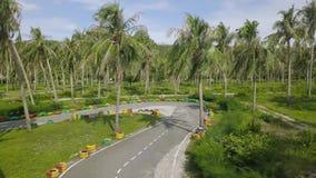 Visión aérea carting el circuito de carreras entre las palmeras verdes en el día de verano Circuito de carreras de la opinión del almacen de metraje de vídeo