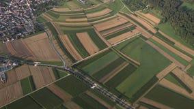 Visión aérea desde un paseo del globo, bosque negro almacen de metraje de vídeo