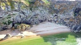 Visión aérea: el vuelo sobre el secadero del  de Ñ de millares aúlla en la playa general con las cáscaras y las rocas cerca de K metrajes