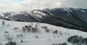Visión aérea: Montañas transcarpáticas, soporte Gemba, invierno de Beutifull, centro turístico de esquí, Pilipets, Ucrania metrajes
