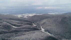 Visión aérea: Paisaje del invierno, vuelo sobre bosque de la montaña de la nieve en puesta del sol almacen de video