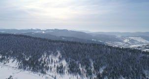 Visión aérea: Paisaje Naturaleza del invierno Vuelo sobre el bosque del invierno almacen de metraje de vídeo