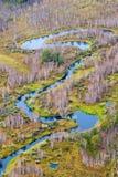 Visión aérea por todo lo alto de bosque y del río del otoño Foto de archivo
