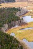 Visión aérea por todo lo alto de prado y de los lagos del bosque del otoño Fotografía de archivo libre de regalías