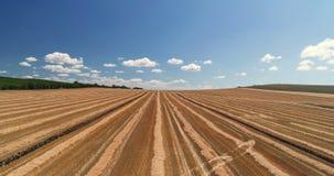 Visión aérea sobre campo de trigo de oro Cosecha Funcionamiento de la m?quina segadora almacen de metraje de vídeo