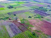Visión aérea sobre campos agrícolas con los árboles florecientes Imagen de archivo