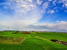 Visión aérea sobre campos agrícolas con los árboles florecientes aéreo Foto de archivo libre de regalías