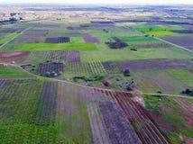 Visión aérea sobre campos agrícolas con los árboles florecientes aéreo Imagenes de archivo