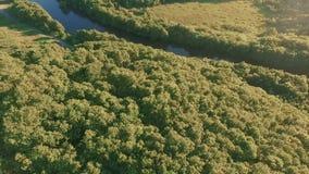 Visión aérea sobre las montañas al río Vuelo a lo largo de un río de la montaña Bosque y montaña almacen de metraje de vídeo