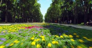 Visión aérea sobre parque del jardín de Varna, de Bulgaria y del mar verde en la ciudad almacen de metraje de vídeo