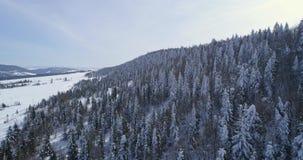 Visión aérea: Turismo idílico hermoso de Europa Forest Mountain Travel White Famous de la naturaleza del invierno del paisaje almacen de metraje de vídeo