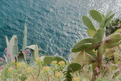 Visión abajo al mar Mediterráneo de la costa italiana Fotografía de archivo libre de regalías