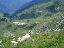 Visión abajo de la colina Imagen de archivo