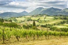 Visión agradable en Italia Marche cerca de Camerino Fotos de archivo libres de regalías