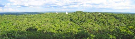 Visión agradable sobre las ruinas del maya Imagen de archivo libre de regalías