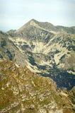 Visión alpestre desde las montañas de Retezat Fotos de archivo