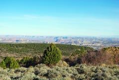 Visión amplia desde el camino de la montaña, Utah Imagen de archivo libre de regalías