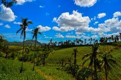 Visión asombrosa sobre la isla de Cebú, Filipinas imagen de archivo