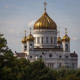 Visión Cristo la catedral del salvador de Moscú Imagen de archivo