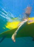 Visión de la persona que practica surf Girl.Underwater. Imagen de archivo libre de regalías
